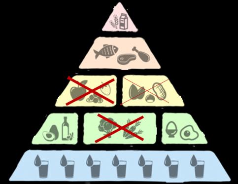 Fructoseintoleranz Basische Ernährungspyramide