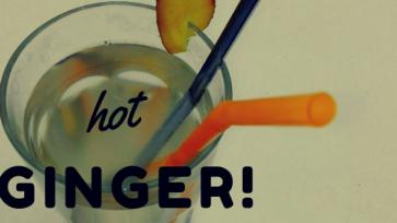 Heißer Ingwer fructosefreies Getränk