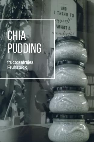 Chia Pudding fructosefreies Frühstück Karenzzeit.png