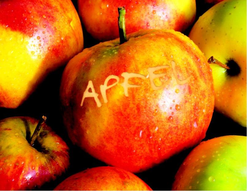 Apfel Karenzzeit Fructoseintoleranz Testphase