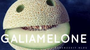 Was darf ich essen Fructoseintoleranz Galiamelone