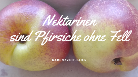 was darf ich essen Fructoseintoleranz Nektarine