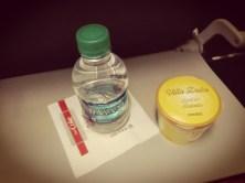 was darf ich essen Fructoseintoleranz Flugzeug nachspeise