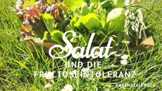 was darf ich essen Fructoseintoleranz Grüner Salat