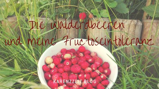 was darf ich essen Fructoseintoleranz walderdbeeren.png