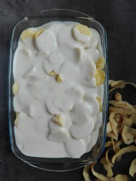 fructosearm rezept gratin 5-644276067..jpg
