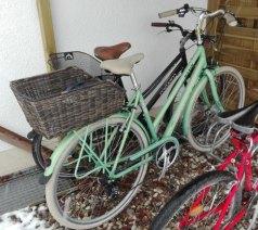 fahrrad fructoseintoleranz