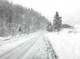 fructoseintoleranz karenzzeit winter