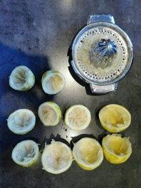 zitronenkuchen Fructosearm rezept 8